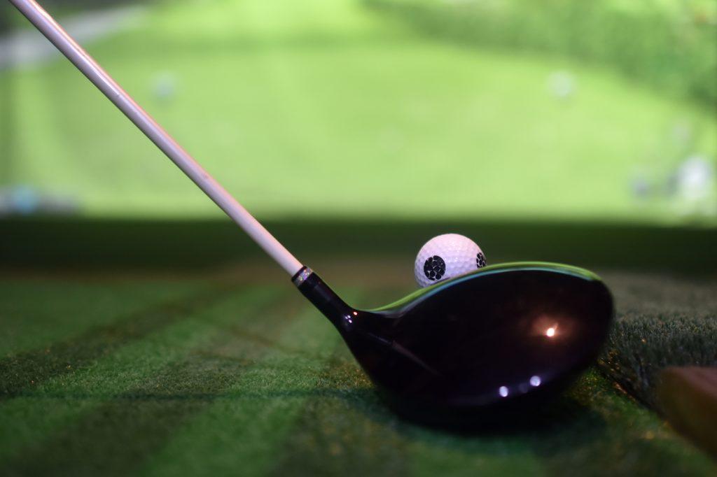 Golf Simulator in Fairmont, Minnesota